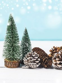El nacimiento de una tradición: Navidad en el Grupo (1)